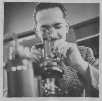 Pierre Louis de Leuze looking into microscope 1947